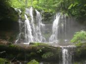 旧・畑ヶ平林道ハイキング~旧畑ヶ平林道沿いの紅葉と滝を巡ろう!~