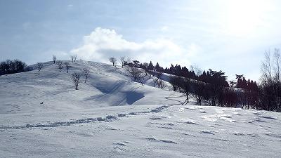 12 冬はどこでも道です 迷わないように!.jpg